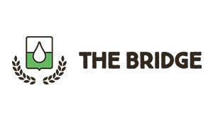 The Bridge Bio